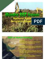 Mundra Issues - SEZ Audit