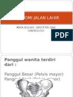 131727778 Anatomi Jalan Lahir 2003 Ppt