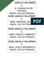 Rene Anhelo Palomino c