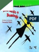 Buscando a Dominga