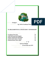 Adelgazamiento de La Capa de Ozono Trabajo