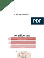 Presentación1 monoaminas