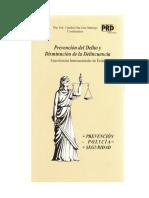 Prevencion Del Delito_practicas Exitosas