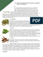 10 Plantas Medicinales y Para Que Sirven Especias Que Alcalinizan Como La Albahaca