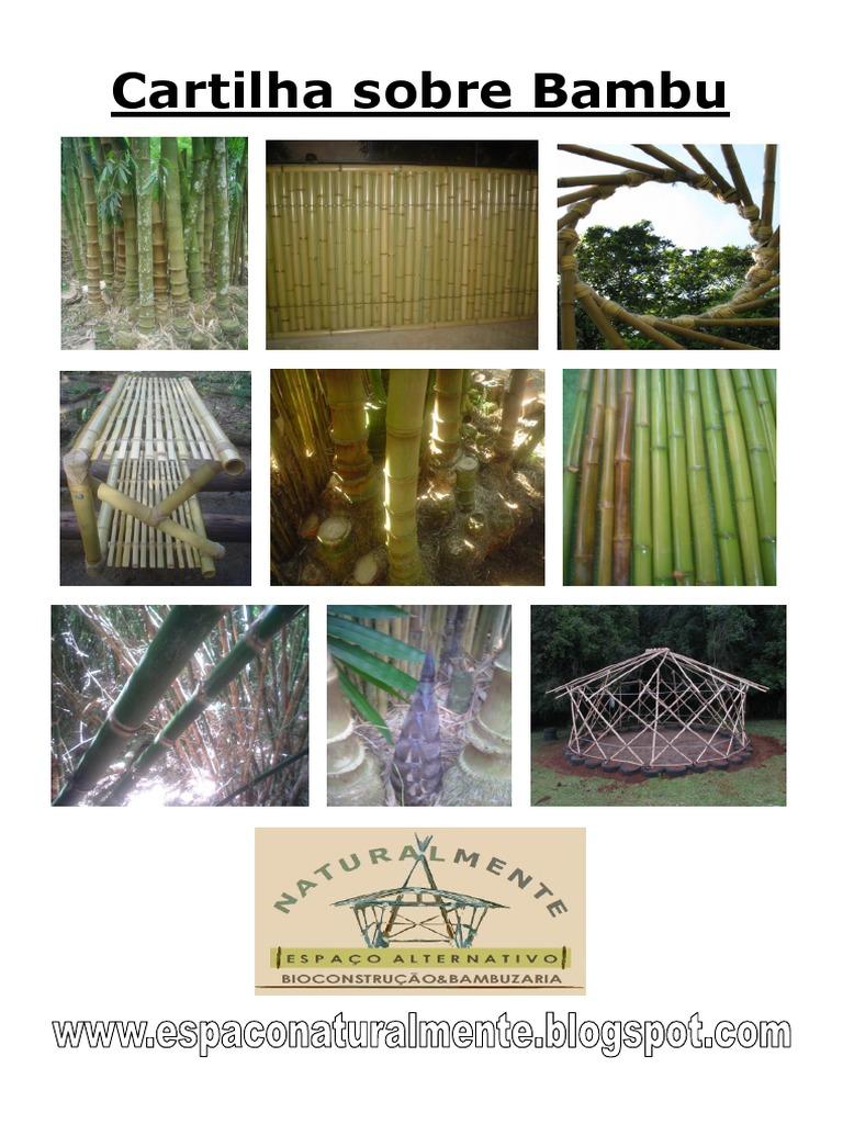 Apostila bambuzaria 6fa55a7ad5