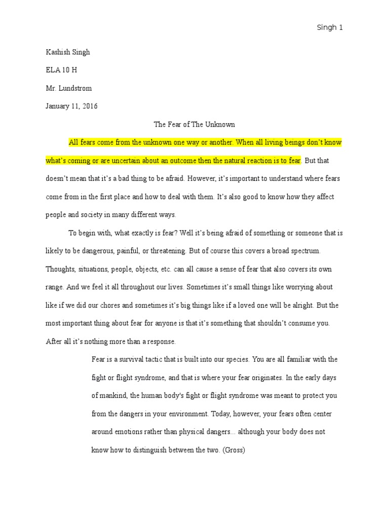 essay on fear of darkness
