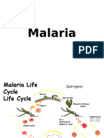 K24-Malaria Blok Tropmed