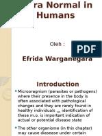1. Flora Normal Pada G.I.tract - Copy