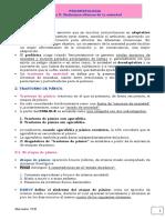 MERCEDES Tema 3 Síndromes Clinicos de La Ansiedad