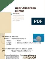 PIP SAP