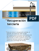 Recuperación terciaria