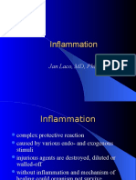 25inflammation.ppt