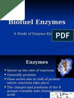 Biofuel Enzymes