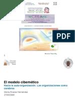 R9 - 4.C - El Modelo Cibernetico