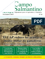 Campo Salmantino Noviembre 2015