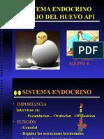 Sistema Endocrino Manejo Del Huevo API