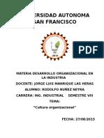 Cultura Organizacional (Estudio)