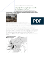 La Deforestación Es La Principal Causa de Las Crecidas de Los Ríos Iguazú y Paraná