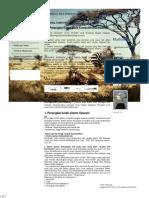 Periferal Multimedia _ Multimedia