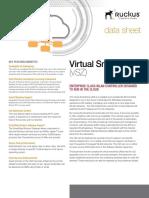 ds-virtual-smartzone-e.pdf