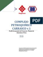 Perfil Carrasco v[1].1