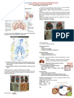 Approach to the Patient With Respiratory Disease