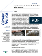 CircTec-33-2009
