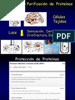 2-Tecnicas de Proteinas