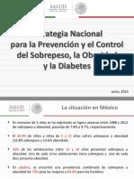 Estrategia Nacional Obesidad PPT