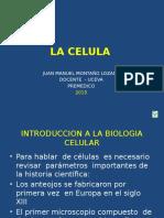 celula.pptx