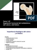 Tema 1.07- Regulación Hormonal Del Metabolismo Del Calcio y Del Fósforo
