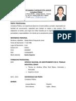 CV Gladys Choquecota.pdf