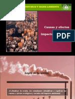 Sesion VIII - Causas y Efectos Del Impacto Ambiental 27522