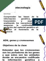 ADN Sinteis de Proteinas