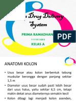 Colon Drug Delivery System