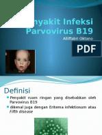 Penyakit Infeksi Parvovirus B19