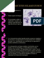actinomices edafologia.ppt