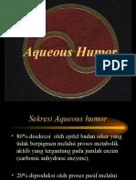 4 - Glaukoma