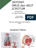 ppt Priapismus + akut scrotum maygie
