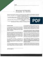 anomalias_de_dentina_dra_arenas.pdf
