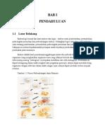makalah biologi embrio