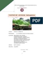 Proyecto Lechuga Hidroponica Para Correo