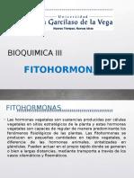 Fitohormonas
