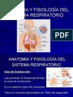 Anatomiayfisiologiarespiratoria 1 130913173754 Phpapp02