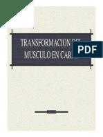 Transformacion Del Musculo en Carne
