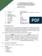 SÌLABO TESIS II- UNIVERSIDAD DE SAN PEDRO.docx