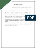 SEMINARIO ACIDOS NUCLEICOS.doc