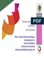 Determinantes_Sociales Indesol 2011