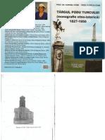 monografie podu turcului.docx