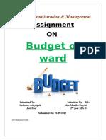 2)Budget Plan